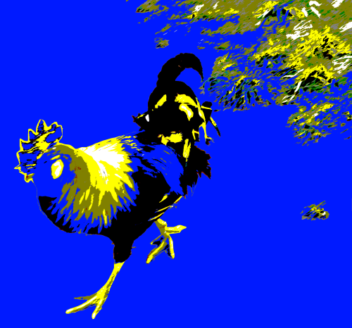Cockerel Screen Print Blue